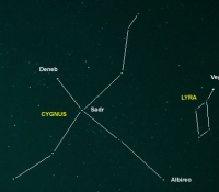 Cygnus and Lyra outline