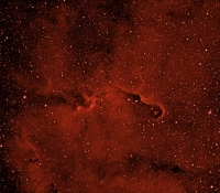 IC1396 Elephants Trunk