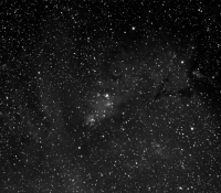 NGC2264 Cone Cluster