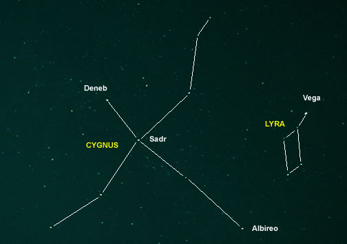 Cygnus and Lyra Asterism Outline