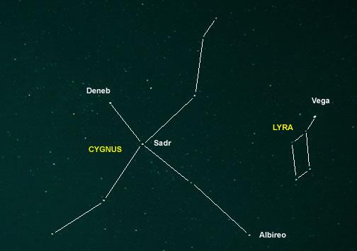 Cygnus and Lyra Asterism Outline